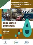Sector-curtiembre166.pdf