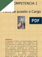 Tema Perfil y Diseño de Cargos