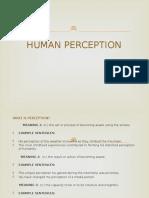 Human Perception