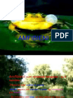 amfibieni.ppt