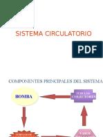 4. Sist Circulatorio
