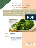 Trabajo Final de Microbiologia-brocoli (1)