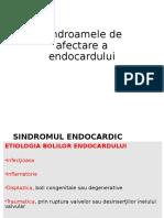 Curs Endocardita