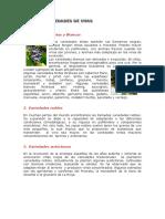 cursodeelaboracindevino-130429052556-phpapp02