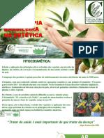 Fitoterapiabrasileiranaesttica 150213144204 Conversion Gate01