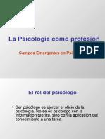 Rol Profesional en Psicologia (2) (1)