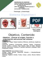 Clase 1 Hitologia Sistema Digestivo 2016 (1)