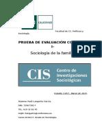 PEC I - Sociología de La Familia - Raul Langarita