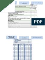 9.210.195-9 Pauta de Evaluacion