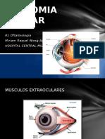 ANATOMIA OCULAR musculos parpados y g lagrimal.pptx