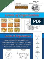 1 levels of organization