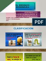 Seres Vivos Clasificacion -Fernando Arnez