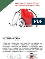 Anatomia y Fisiologia Corazon (1)
