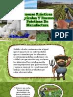 Buenas Prácticas Agrícolas Y Buenas Prácticas De Manufactura. (BPA-BPM)