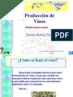 fermentacion-de-vinos-1200861008404086-3.ppt