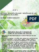 TP N° 1 BIOLOGIA CELULAR Y MOLECULAR