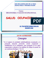 10 Clase Ergo-salud Ocupacional (1)