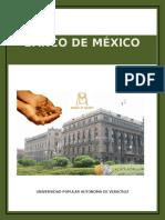 Banco de Mexico Ensayo