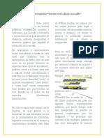 Artículo Periodístico de Opinión de Donde Esta La Franja Amarilla