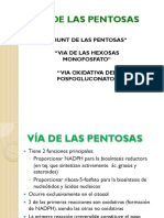 Unidad IV_Vi_a Pentosas_DBIO1037_ Sep 2016 Ppt 4