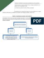 Tema 2.- Reproduccion en Las Plantas