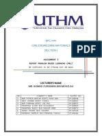 REPORT BKA.pdf