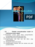 Ginjal Dan Urin