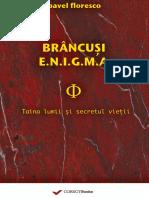 (Preview) Brancusi Enigma