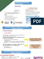 diapos de serie megacariocitica y blanca( ultimo punto).pptx