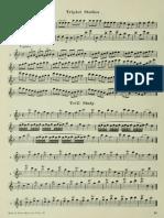 Flute Z