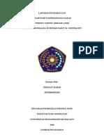 LAPORAN PENDAHULUAN CKD (1).docx