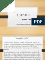 Fosfatos PDF
