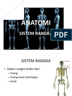Anatomi tulang.pdf