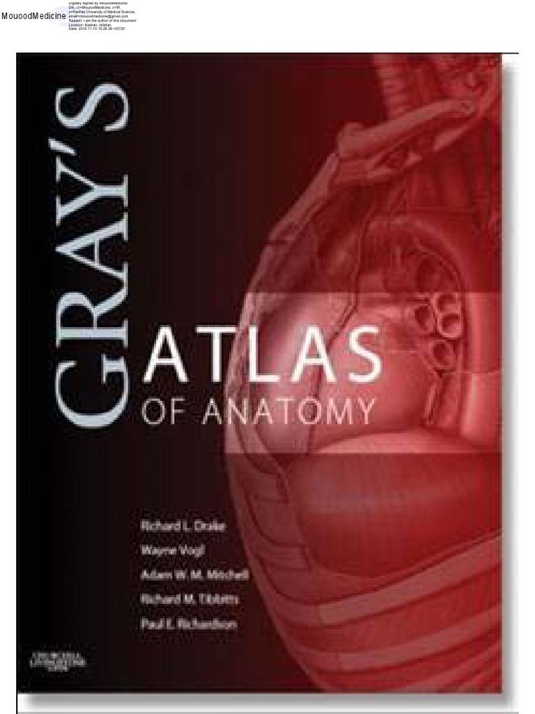 Grays Atlas Of Anatomypdf