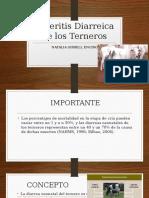 Enteritis Diarreica de Los Terneros