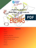 29428437-ENZIMAS