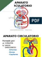 Aparato Circulatorio Psa