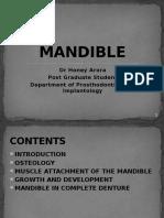 35789628-Mandible-Final-Ppt.pptx
