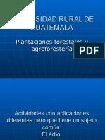 Silvicultura y Plantacionescurso