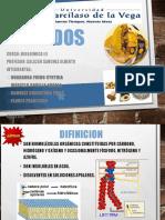 LIPIDOS-EXPOSICION