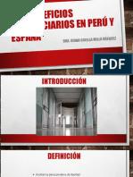 041016 Beneficios Penitenciarios en Perú y España - Dra. Diana Gisella Milla Vásquez