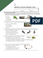 Prueba Diagnóstico 4º de Ciencias Naturales