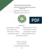 Laporan Praktikum Kimia Anorganiikk