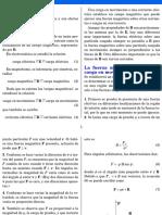 Campo_magnetico_22046.pdf