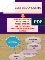 RETIKULUM ENDOPLASMA( PPT)