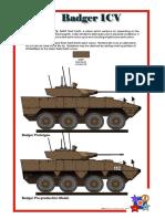 Aerocreations Badger.pdf