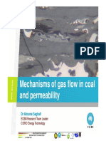 03.Mechanisms of Gas Flow in Coal
