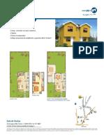 Araucaria de Colina Proyecto Casa Acacia