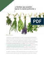 15 Plantas y Hierbas Que Pueden Ayudar a Mejorar Tu Salud Pulmonar y Respiratoria