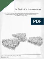 Cromatina sexuala wikipedia